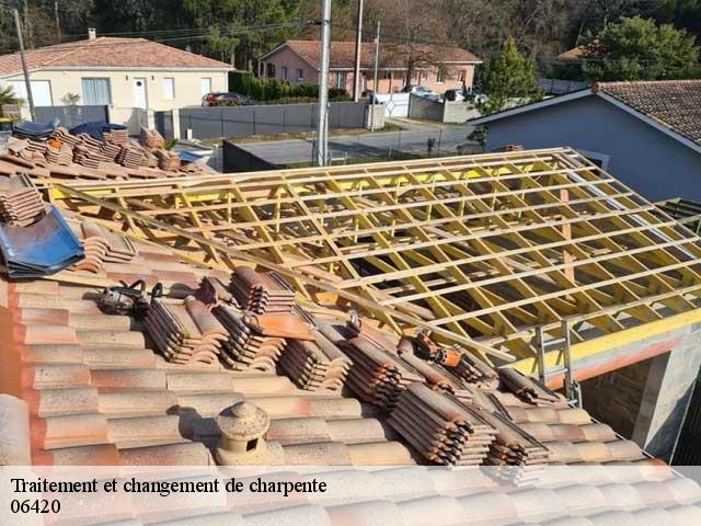 Traitement de charpente  06420