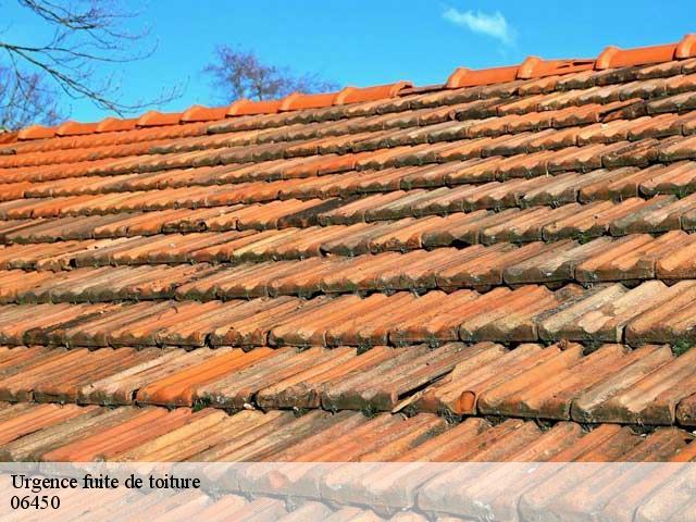 Réparation de fuite de toiture à Saint Jean La Riviere tél: 04.11.34.19.96